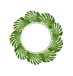Philodendron monstera leaf banner wreath vector