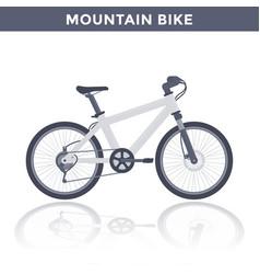 mountain bike on white vector image
