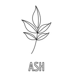 Ash leaf icon outline style vector