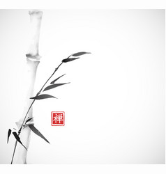 Bamboo tree hand drawn with ink in minimalist vector