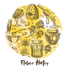 flower honey beekeeping farm honeycomb and beehive vector image