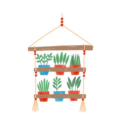 flowers in pots flat hanging vector image