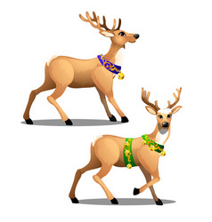 set animated christmas deer with beautiful vector image