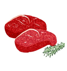 sirloin steak vector image