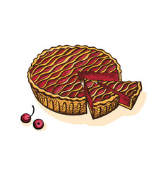 Watercolor cherry pie vector