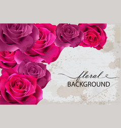 floral background card with fuchsia roses vector image vector image