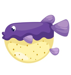 isolated blowfish vector image vector image
