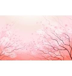 Sakura branch spring floral background vector image