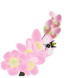 Cherry blossom branch with bees spring composition vector image