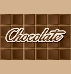 dark chocolate type vector image