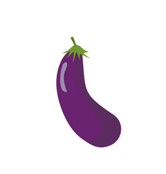 eggplant isolated purple vegetables on white vector image