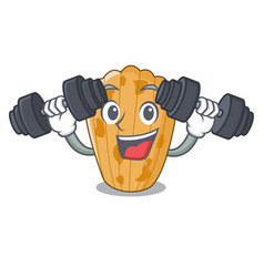 fitness cookies in the form madeleine cartoon vector image