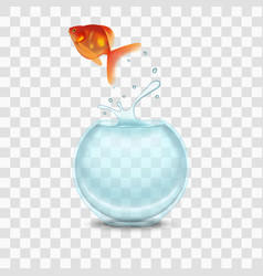 Gold fish and aquarium on a transparent background vector