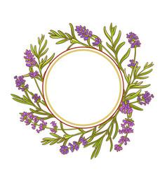 lavender plant frame vector image