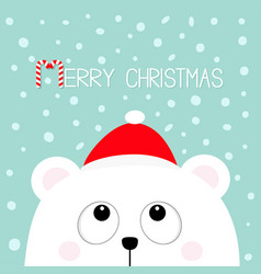 merry christmas candy cane polar white little vector image