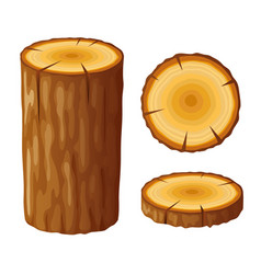 Tree wooden stump with rings cut trees isolated vector