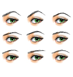 Nine different eyebrows set vector image vector image