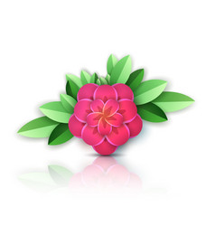 paper abstract pink flower vector image