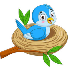 cartoon blue bird sitting in a nest vector image