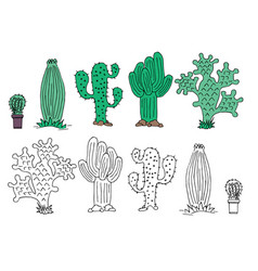cute hand drawn cactuse in the pots vector image
