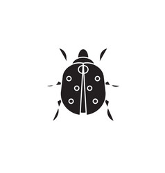 ladybug black concept icon ladybug flat vector image