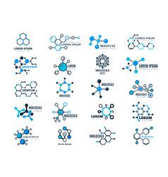 molecular logotypes evolution concept formula vector image