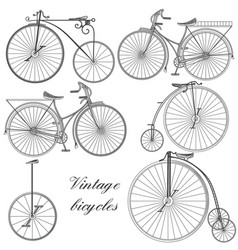 set of engraved bicycles for design vector image
