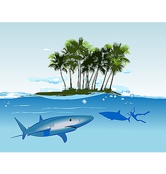 shark island daylight vector image
