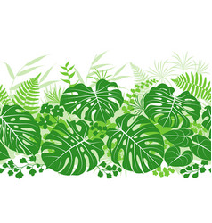 Tropical plants green pattern vector
