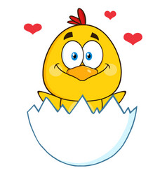 Yellow chick hatching from an egg with hearts vector