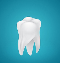 Healthy teeth vector image vector image