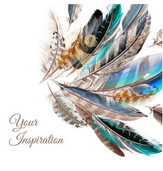 Fashion background with blue white brown feathers vector