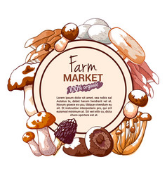 mushroom hand drawn banner or label vector image