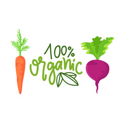 organic food carrot and beet vegetables vector image