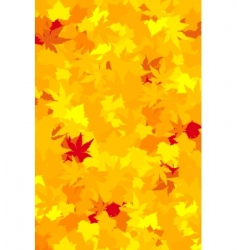 vibrantly colored fall leaves vector image vector image