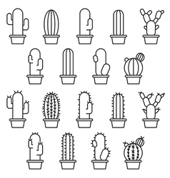 Cactus abstract collection vector