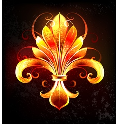 Fire Lily vector image