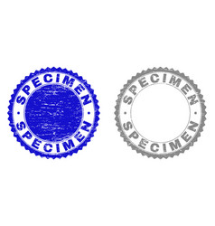 Grunge specimen textured stamps vector
