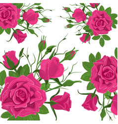 seamless flower pattern vintage pink roses with vector image
