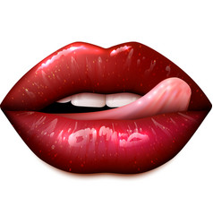 Female Lips Make Up vector image vector image
