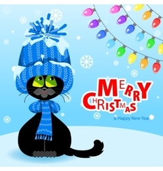 Black cat in a blue hat and scarf looks at the vector