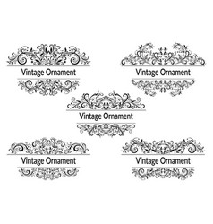 floral vintage patterns vector image