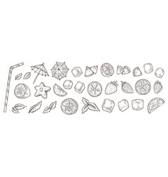 hand drawn cocktail elements vector image