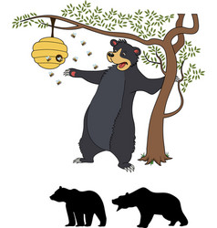 cute cartoon bear cub with honey and bees vector image vector image