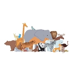 animals different spices banner zoo poster vector image