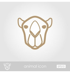 Camel outline thin icon Animal head symbol vector