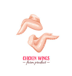 chicken wings vector image
