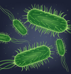 Escherichia coli bacteria colony realistic vector