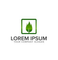 leaf on square logo design concept template vector image