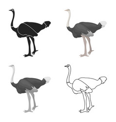 Ostrich icon in cartoon style isolated on white vector